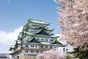 Risultato immagini per nagoya castle 300x200